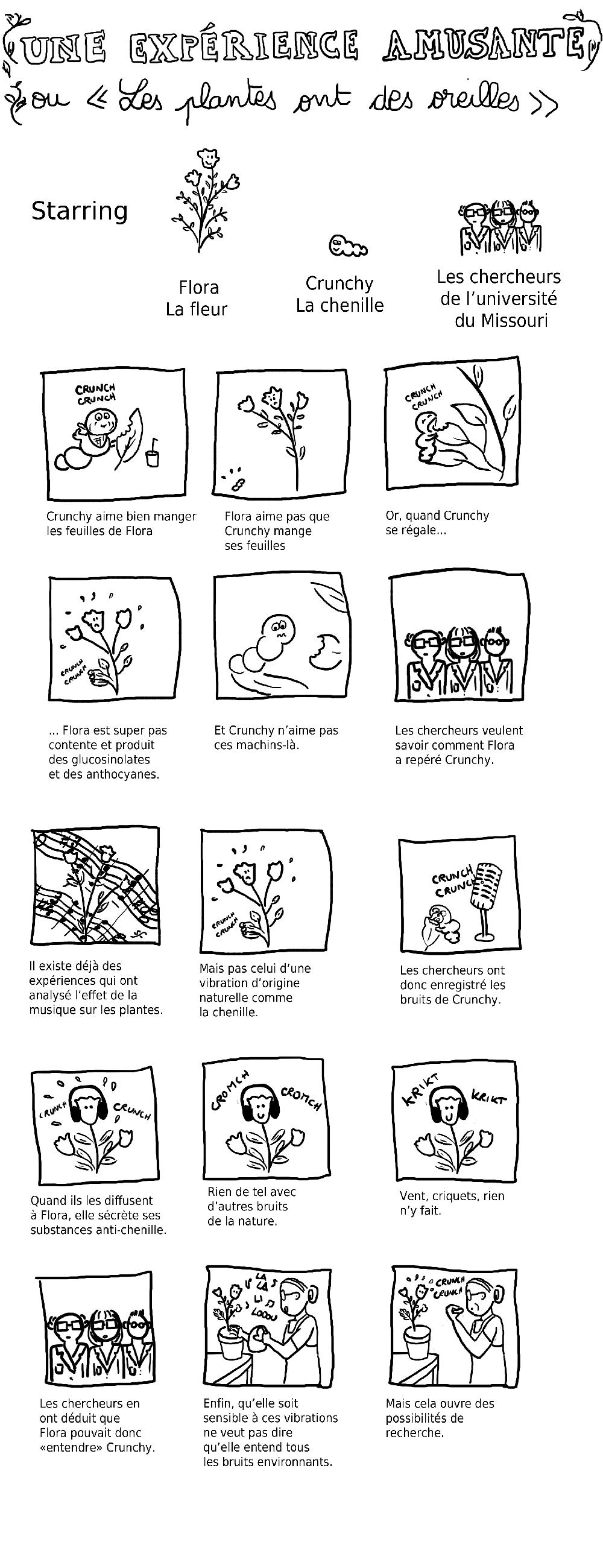 exp-scienceBD
